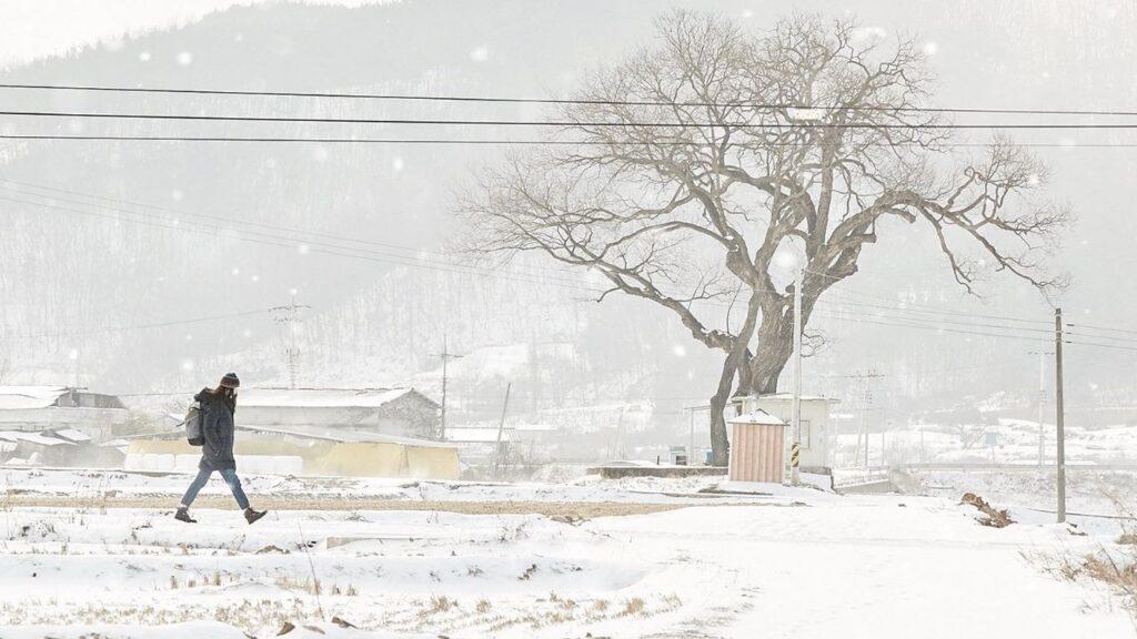 little forest 2018 korean movie winter